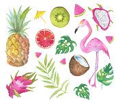 Tropical set with green leaves, fruits and pink flamingo isolated on white background. For design, print and more