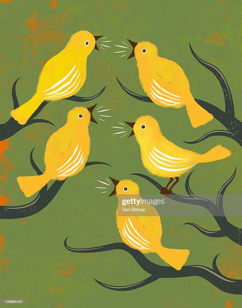 Tweeties Social Birds illustration : Stock Illustration