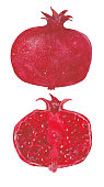 two ripe pomegranate, watercolor illustration  on white background
