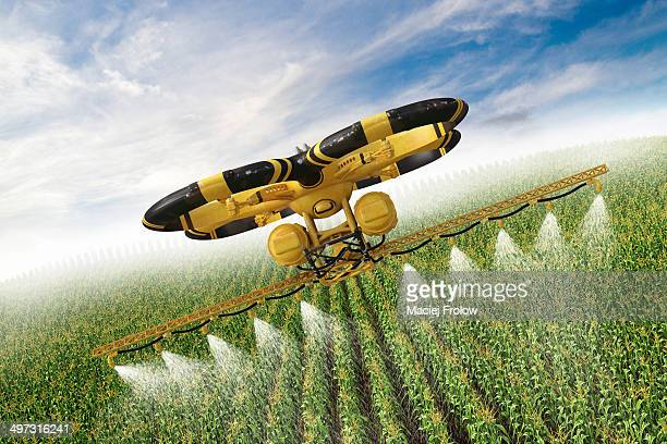 Utility drone flying  above a corn field