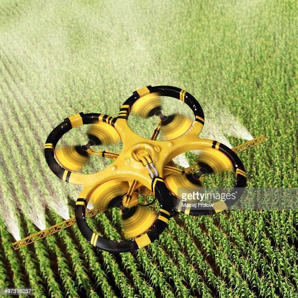Utility drone over corn field