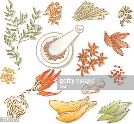 Variety types of spices, high angle view : Vektorgrafik