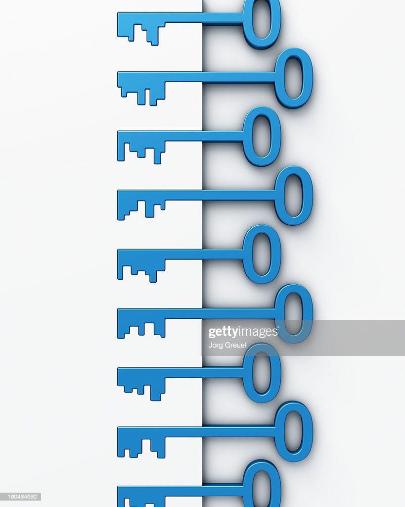 Various keys in locks : Stock Illustration