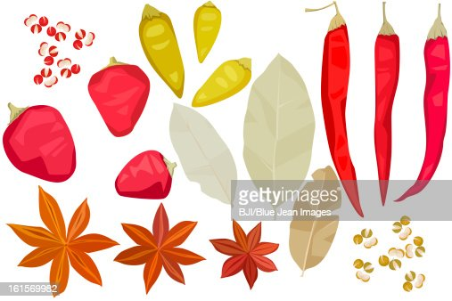 Various spices : Stock Illustration