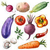 Hand drawn watercolor illustration. Set of organic products. Sketch of various vegetables isolated on white.