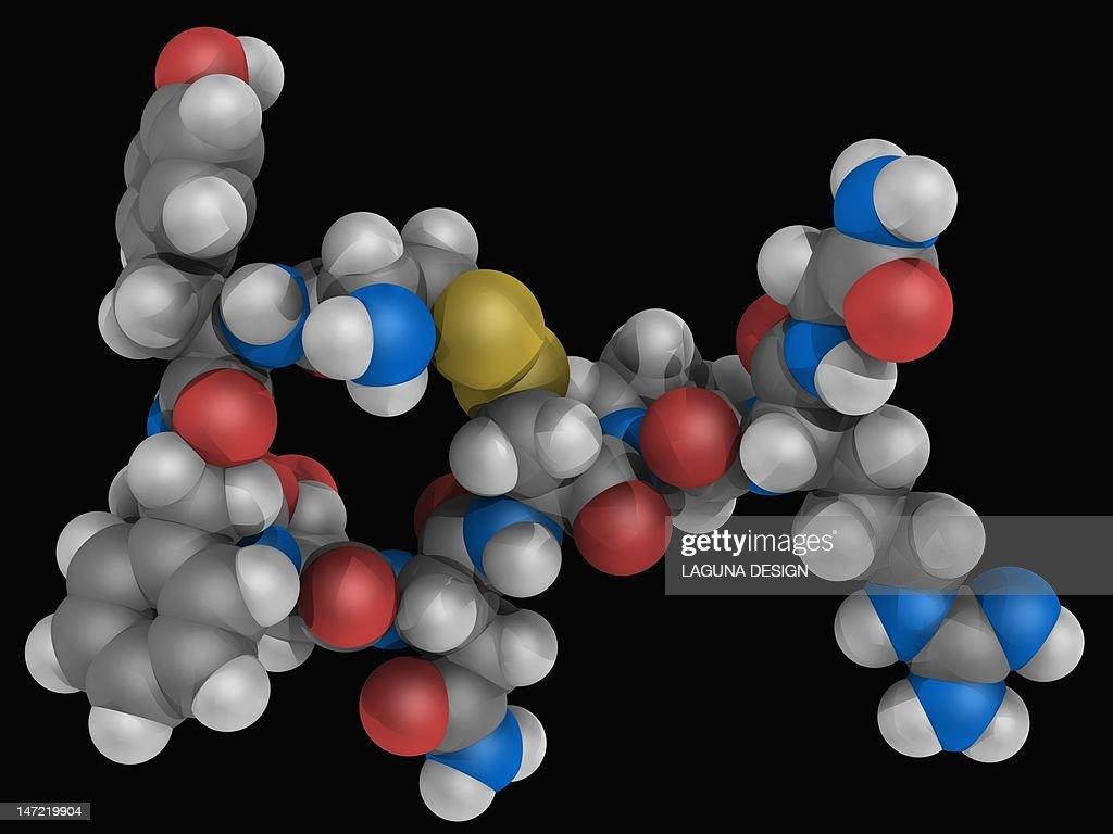 Vasopressin hormone molecule : Stock Illustration