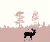 vector silhouette of the deer on wood background