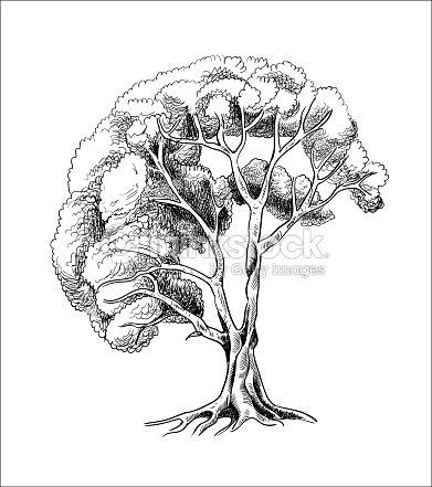 Vector árvore Desenho Tinta De Silhueta De Uma árvore De Mão