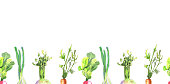 Colorful vegetables with leafy tops. Repeating horizontal border. Isolated on white background - Illustration