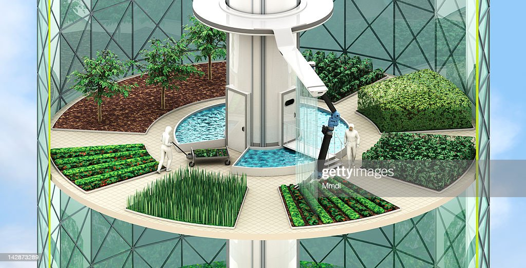 Vertical Farming - Crops : Stock Illustration