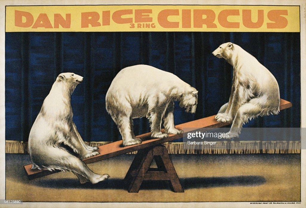 Vintage circus poster of polar bears on seesaw : Stock Illustration
