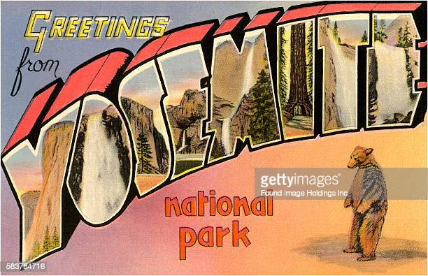 Greetings from Yosemite National Park California large letter vintage postcard