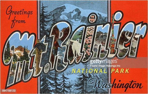 Greetings from Mt Rainier National Park Washington large letter vintage postcard