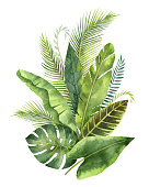 Watercolor bouquet tropical leaves and branches isolated on white background. Illustration for design wedding invitations, greeting cards, postcards with space for your text.