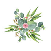 Watercolor hand painted bouquet with green eucalyptus leaves and branches. Healing Herbs for cards, wedding invitation, posters, save the date isolated on white background.
