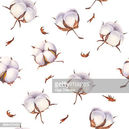 Dessin Sans Soudure De Coton Aquarelle Fleurs Sur Fond Blanc