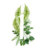 Floral number one. Beautiful green leaves and branches painted with watercolor. Watercolor eucalyptus and fern foliage numbers. Great for weddings table cards.