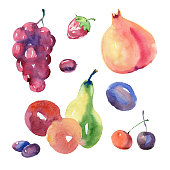 Watercolor painting. Collection of fruits on white background.