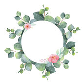 Watercolor hand painted round frame with eucalyptus and pink flowers. Healing Herbs for wedding invitation, natural cosmetics or greeting card. Spring or summer flowers with space for your text.