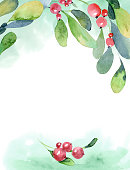 Watercolor illustration. Christmas background of green buxus branch, leaves and red berry