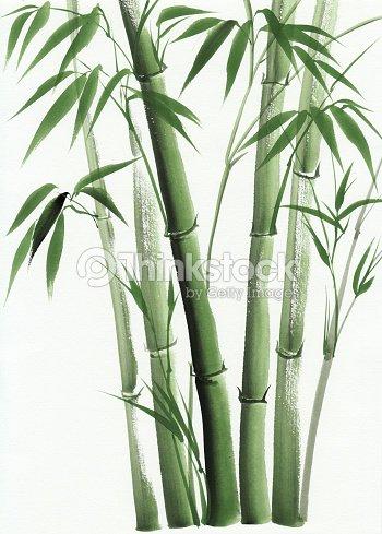Dipinto ad acquerello di bamb illustrazione stock for Color bambu pintura