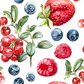 watercolor pattern forest berries strawberry blueberry dogrose cowberry medicinal herbs