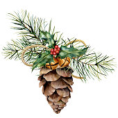 Watercolor pine cone with Christmas decor. Hand painted pine cone with christmas tree branch, bells, holly and craft ribbon isolated on white background for design or print. Holiday plants