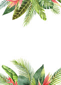 Watercolor rectangular frame tropical leaves and branches isolated on white background. Illustration for design wedding invitations, greeting cards, postcards with space for your text.