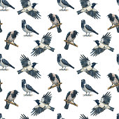 Seamless pattern of crows on white background. Hand painted in watercolor.