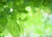 Watercolor spring foliage