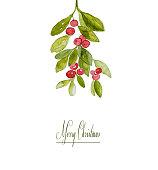 Watercolor Winter Berries (hand painted)