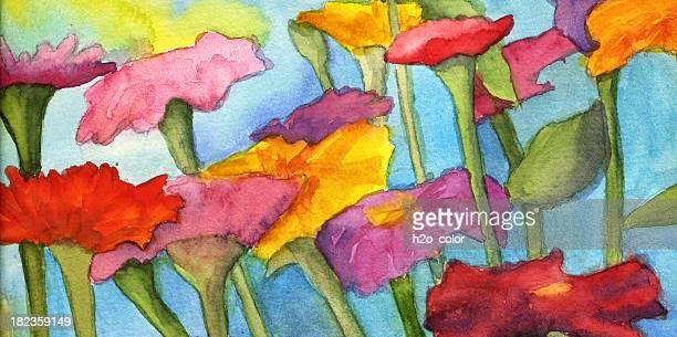 Watercolor Zinnias