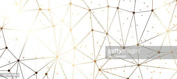 A web of dots connected by lines against a black background