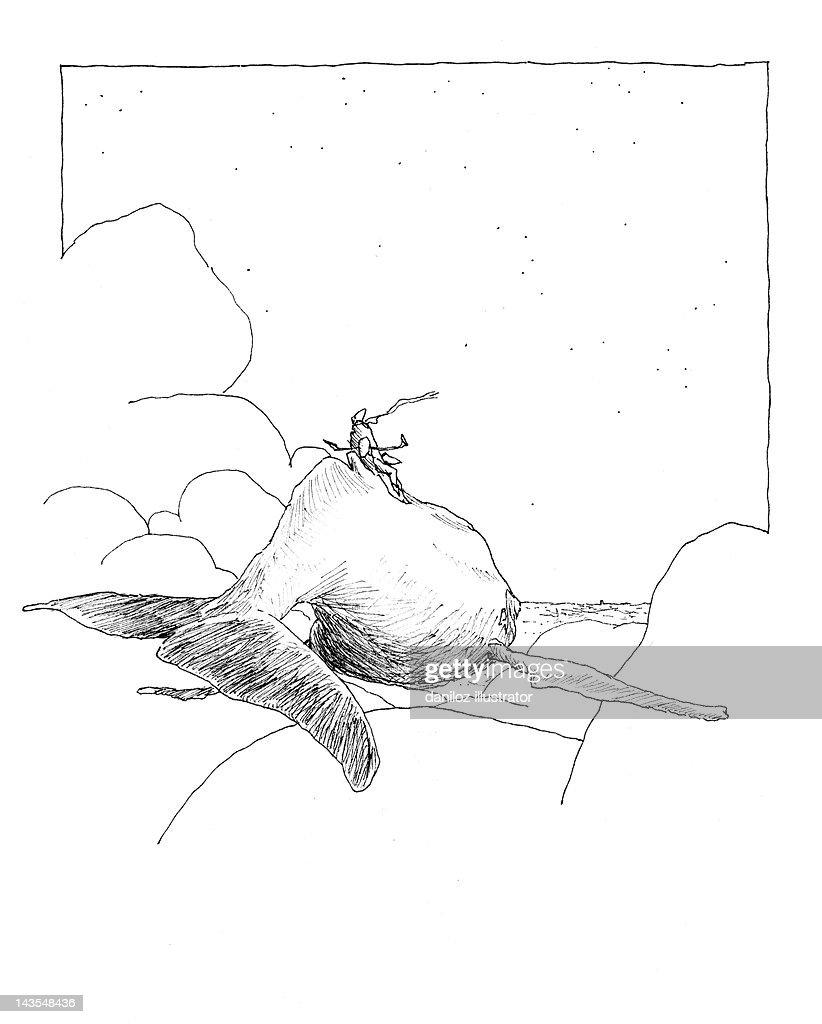 Whale Rider : Stock Illustration