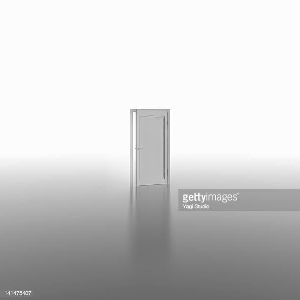 A white door,CG