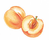 Whole Peach and Peach Half showing Stone