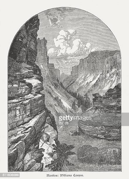 Williams Canyon, Colorado, USA, wood engraving, published in 1880