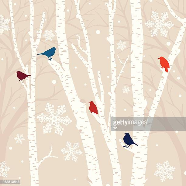 Winter Birds Background