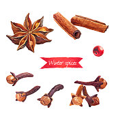 Watercolor illustration of badiam, cinnamon and cloves isolated on white background with clipping paths included