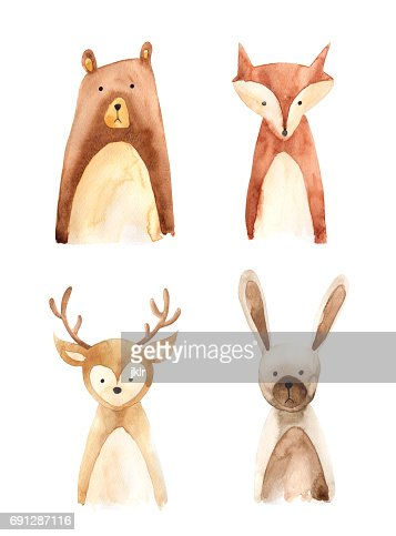 Woodland animals : Stock Illustration