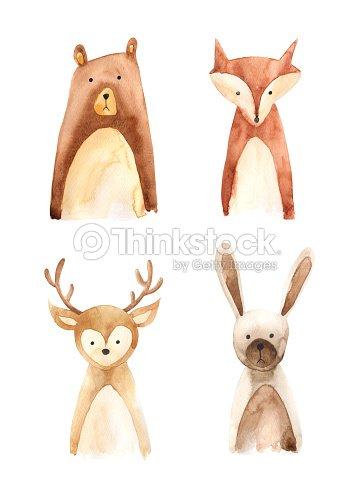 Woodland animals : Stock Illustration