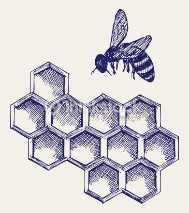 Abeille sur honeycells travail clipart vectoriel thinkstock - Dessin de ruche d abeille ...