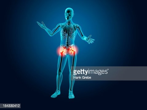xray view of a human skeleton posing stock illustration | getty images, Skeleton