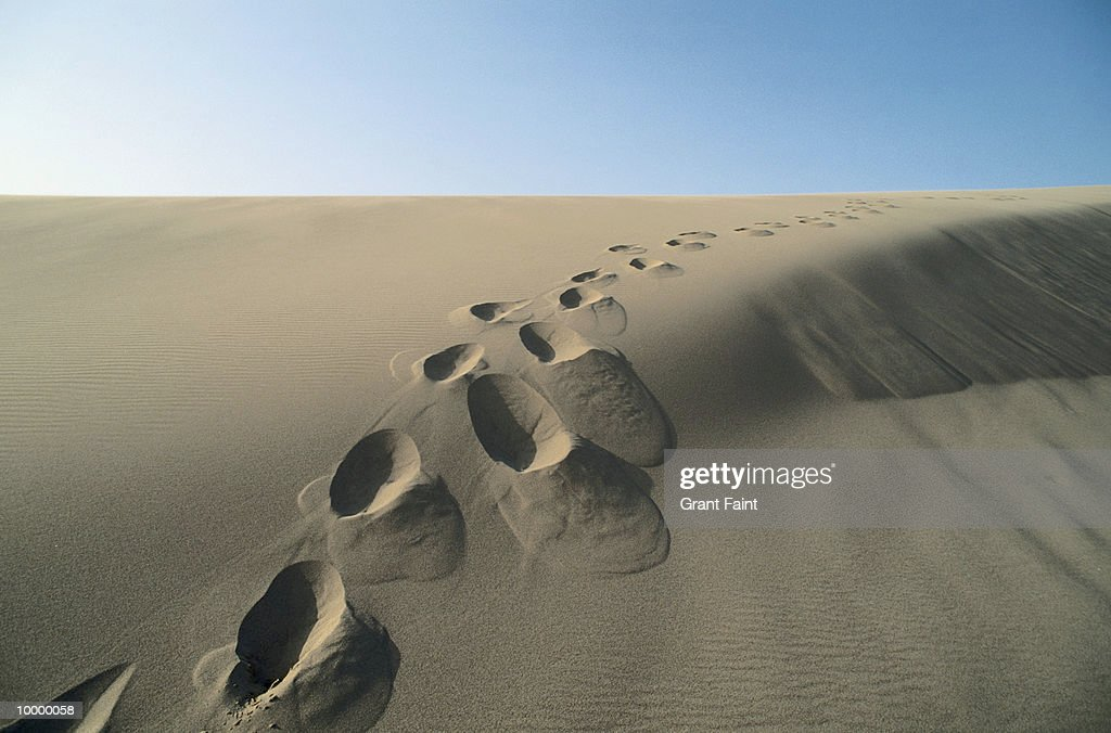 FOOTPRINT TRAIL IN SAND DUNE : Stock Photo