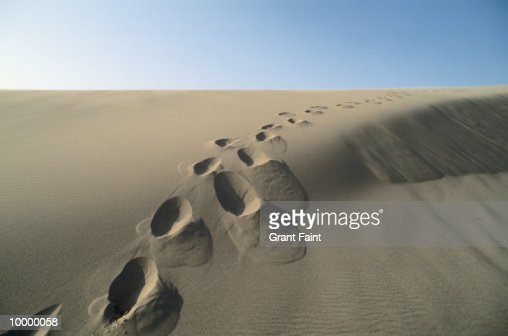 FOOTPRINT TRAIL IN SAND DUNE : Stock-Foto