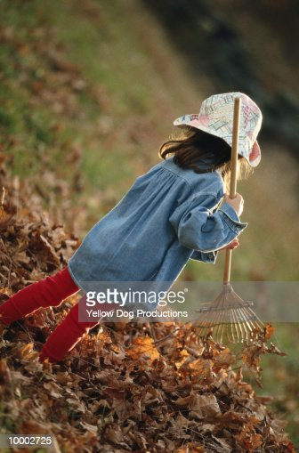 YOUNG GIRL IN HAT RAKING AUTUMN LEAVES : Stock-Foto