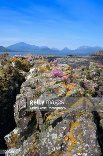 THE CUILLINS IN ISLAND OF SKYE, SCOTLAND : Stock-Foto