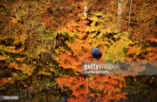 ROCK IN WATER REFLECTING FALL TREES : Photo