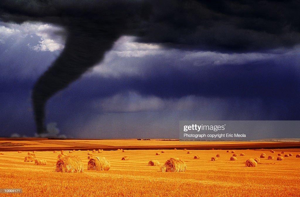 TORNADO ON HORIZON OF WHEAT FIELD : Stock-Foto