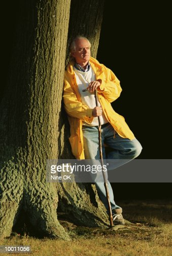 MATURE MAN WITH WALKING STICK LEANING ON TREE : Foto de stock